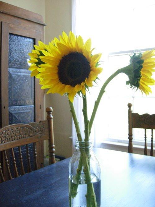 sunflowers_bottle