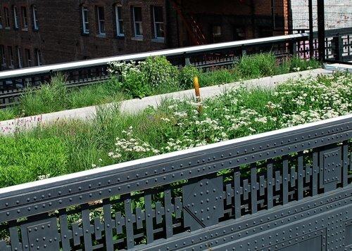 High Line Erin-2