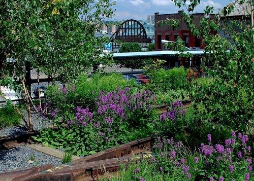 High Line Erin-7