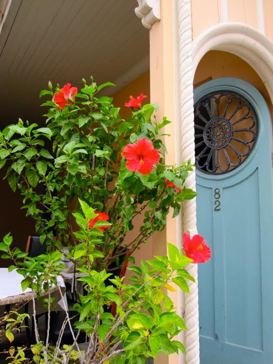 the secret gardens of charleston