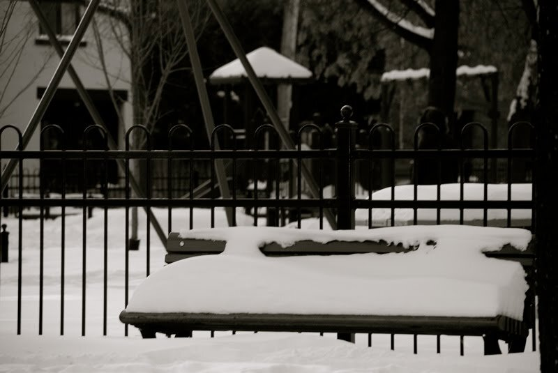 snow bench_mtl