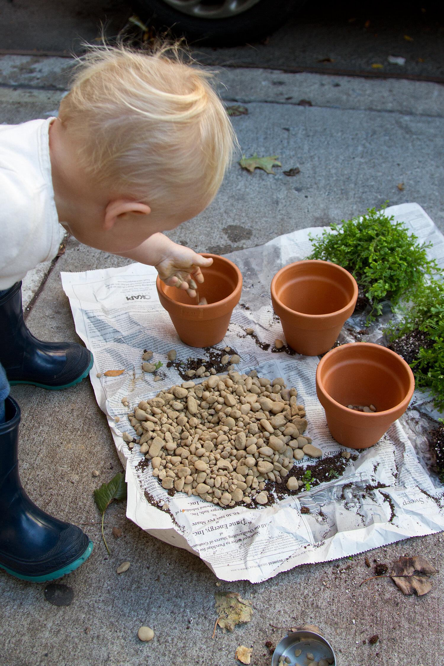 toddler_gardening_reading_my_tea_leaves_IMG_6632