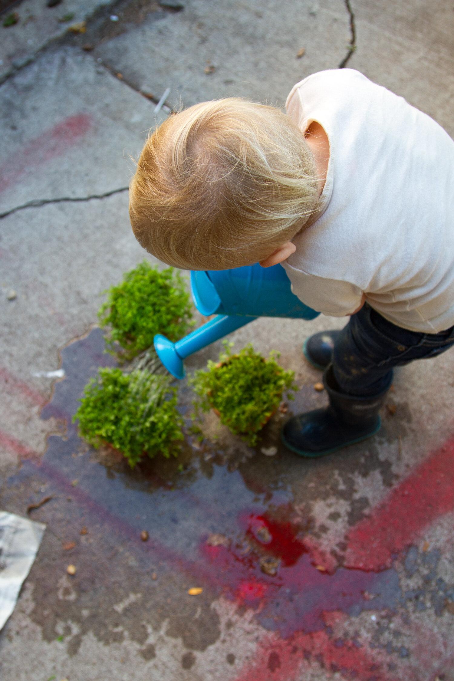toddler_gardening_reading_my_tea_leaves_IMG_6801
