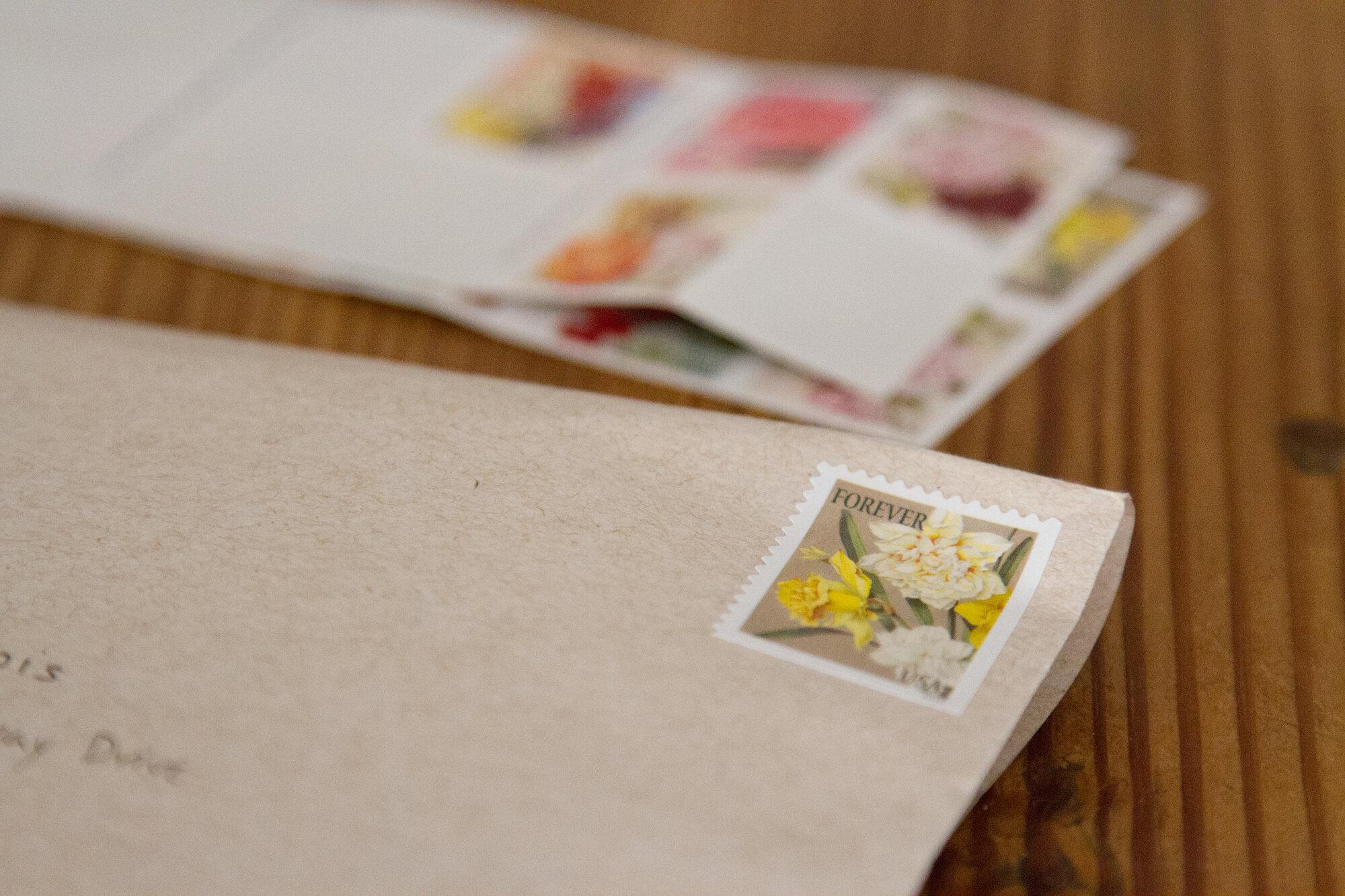 daffodil_stamp_reading_my_tea_leaves_IMG_7149