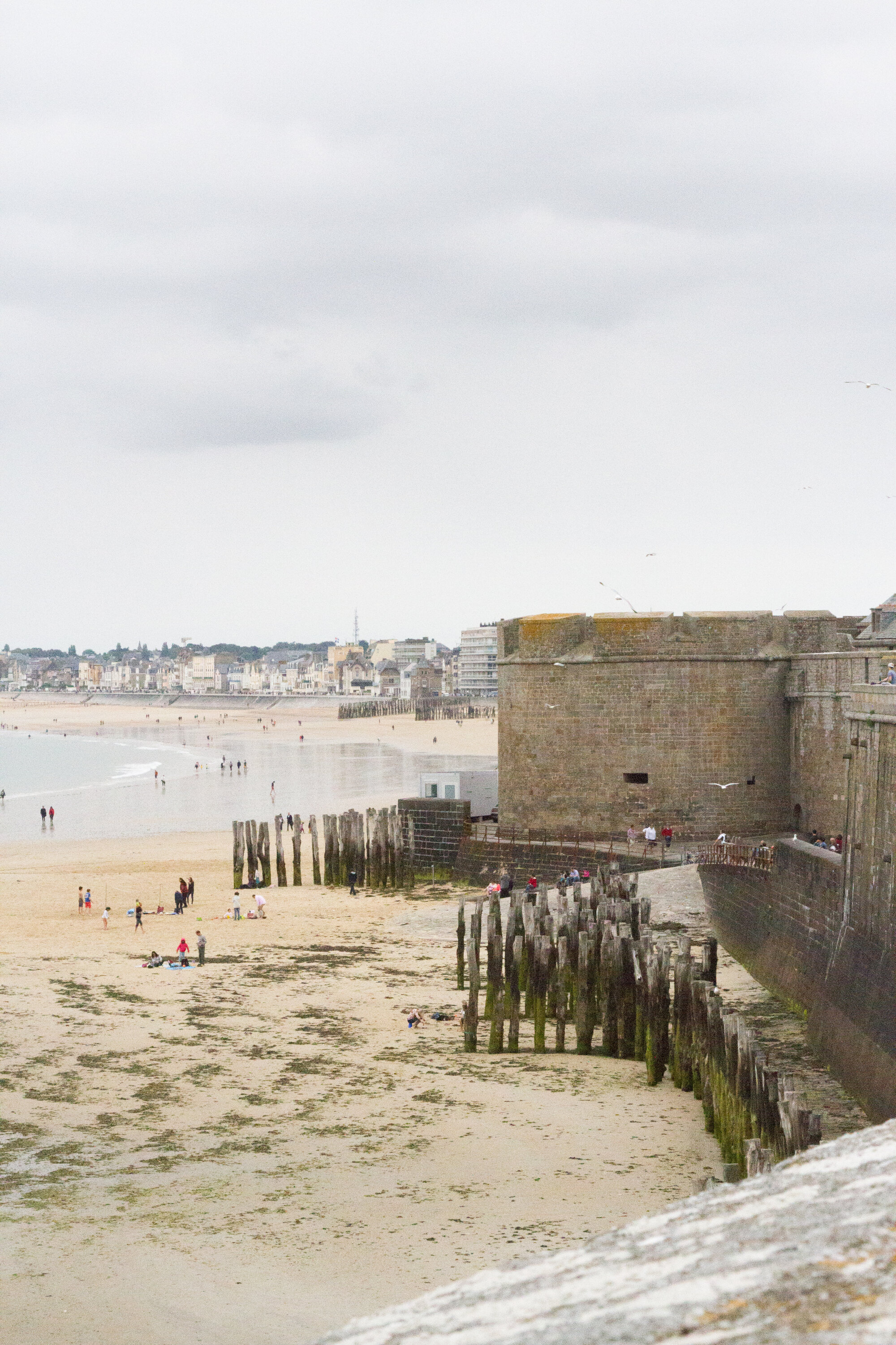 st_malo_reading_my_tea_leaves_IMG_1376