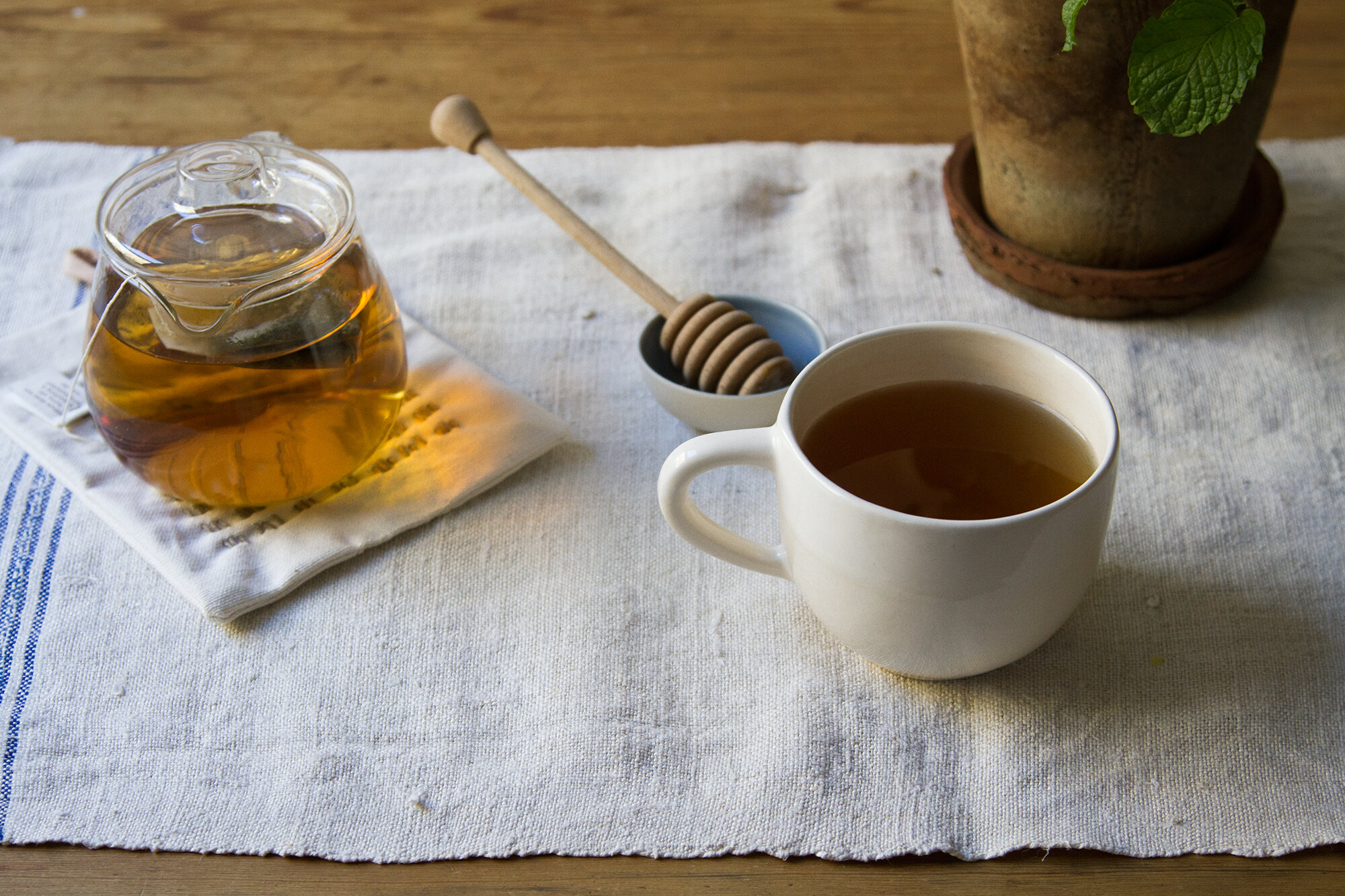 sponsored post with traditional medicinals | reading my tea leaves