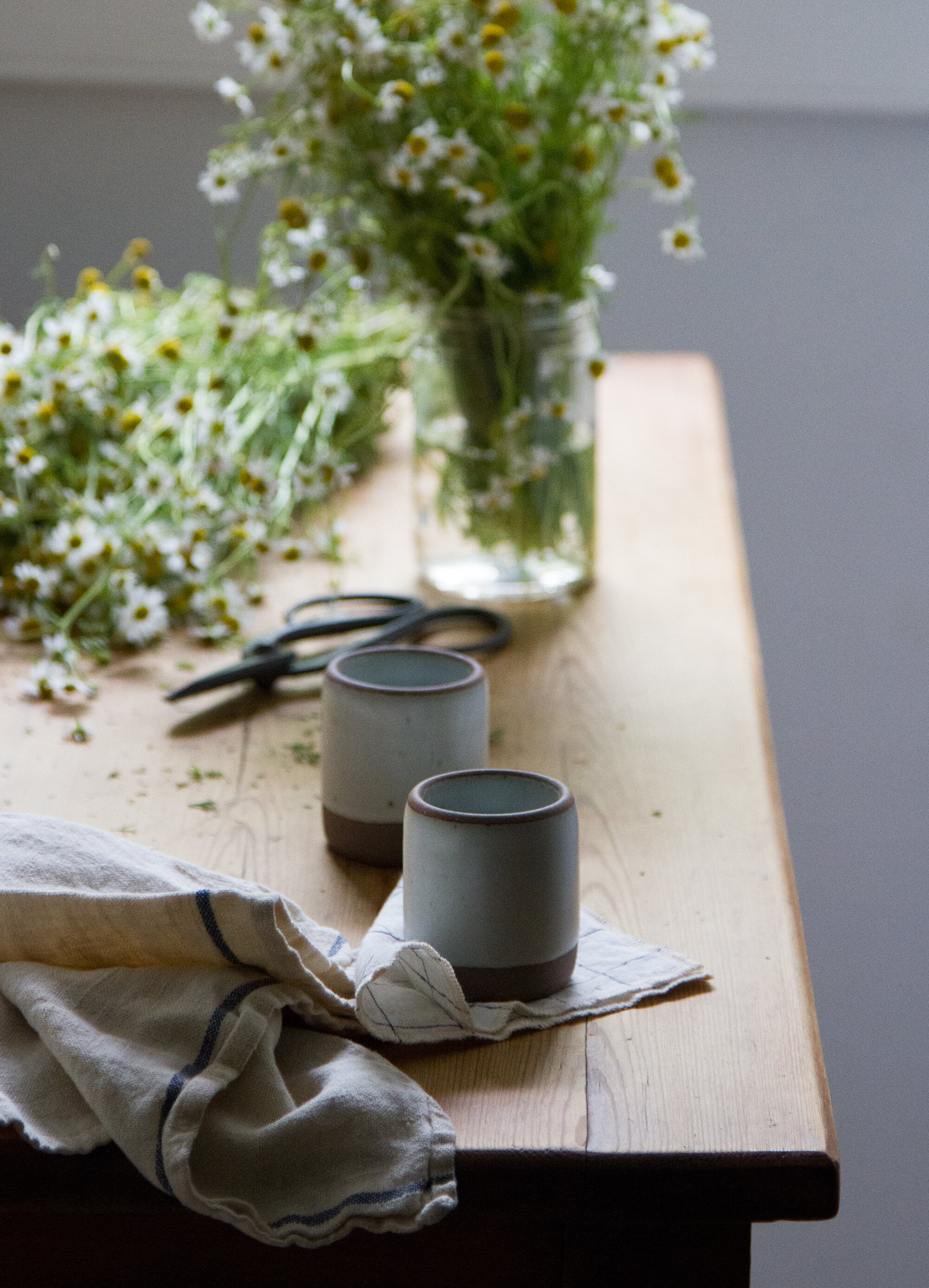 Make Your Own Chamomile Tea Reading My Leaves