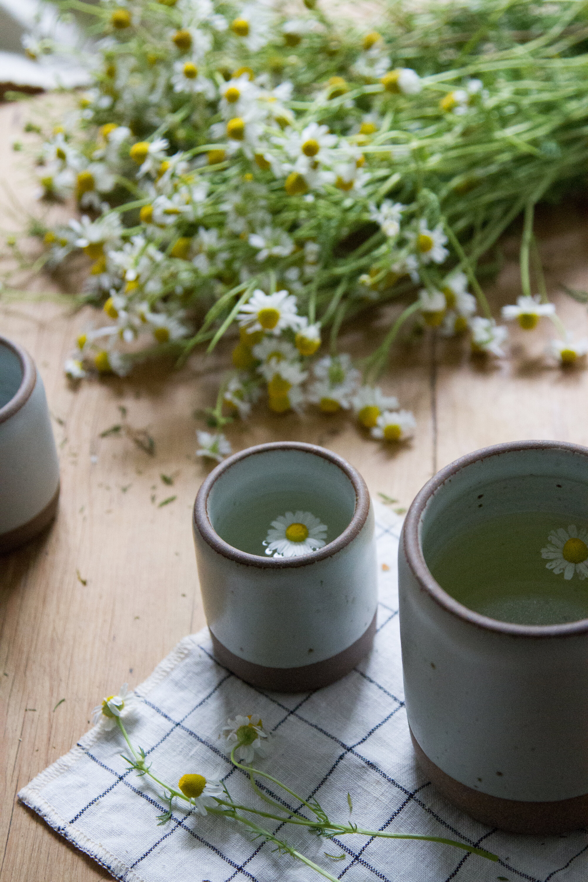 make your own chamomile tea   reading my tea leaves
