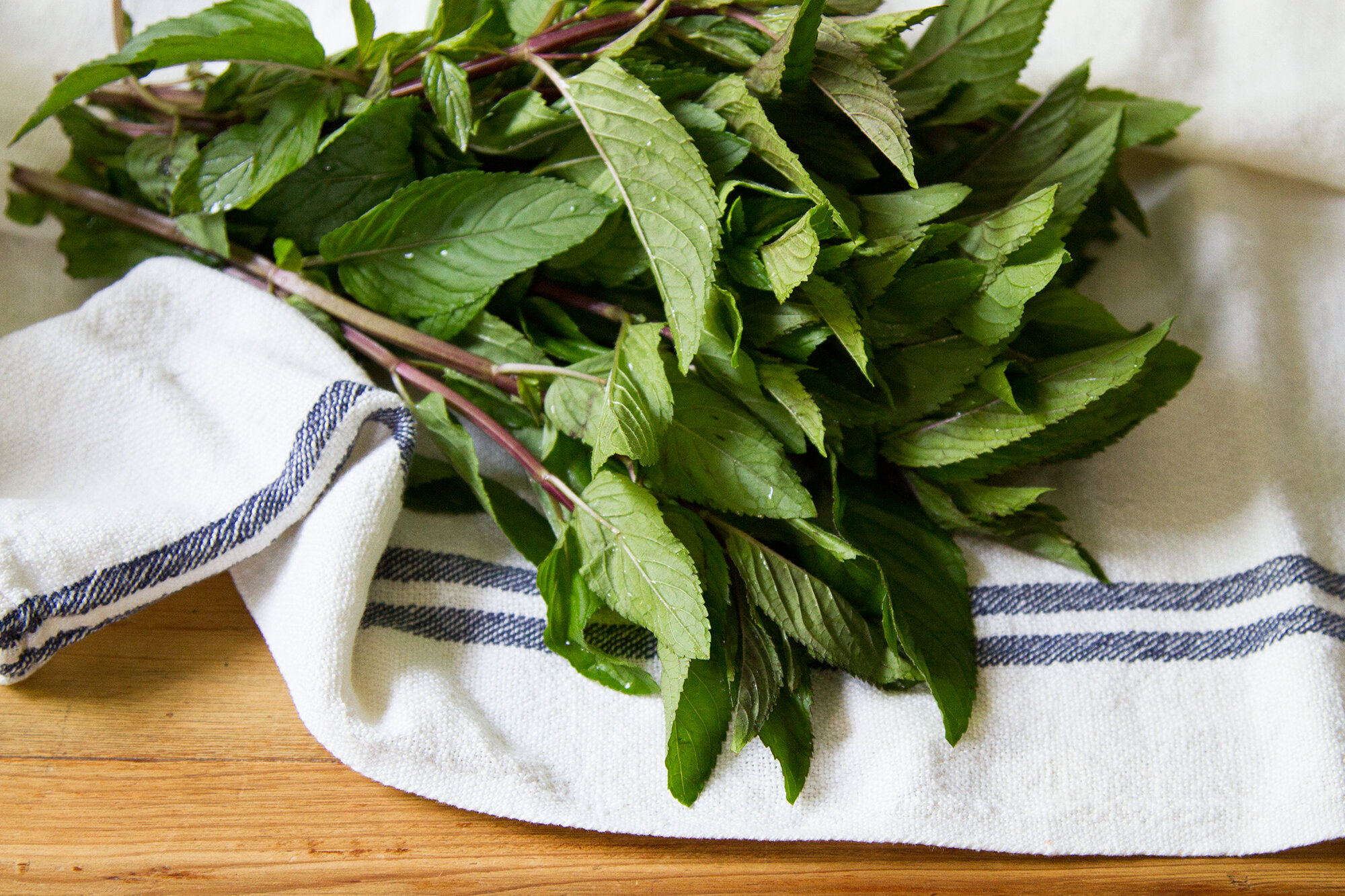 zero-waste produce storage   reading my tea leaves