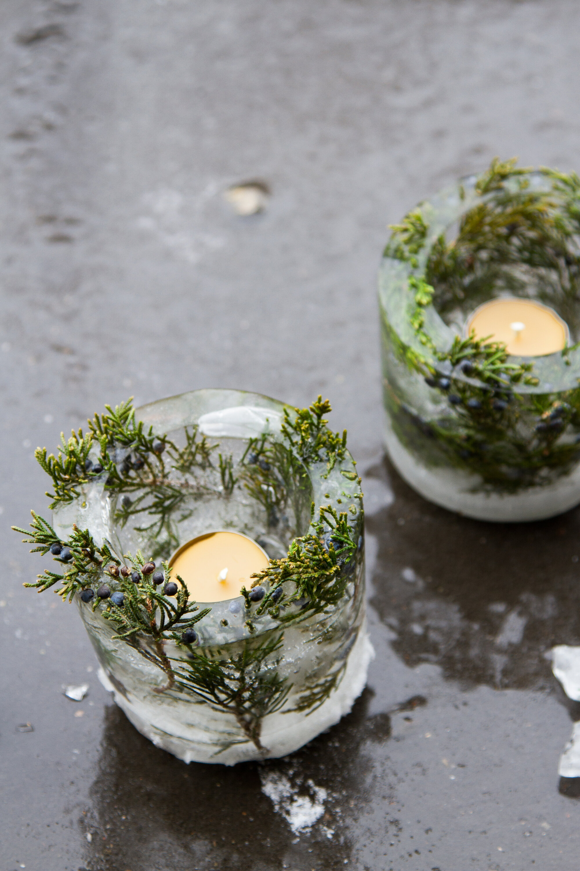 ice lanterns | reading my tea leaves