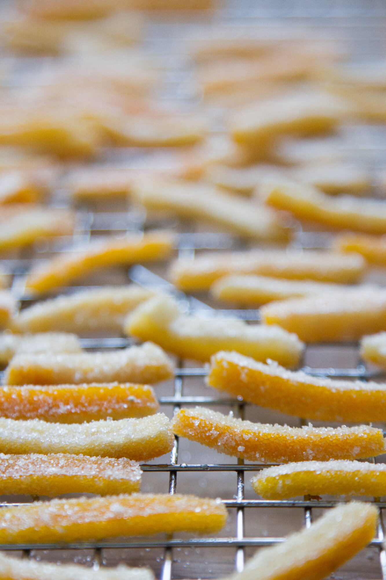 candied orange peel | reading my tea leaves
