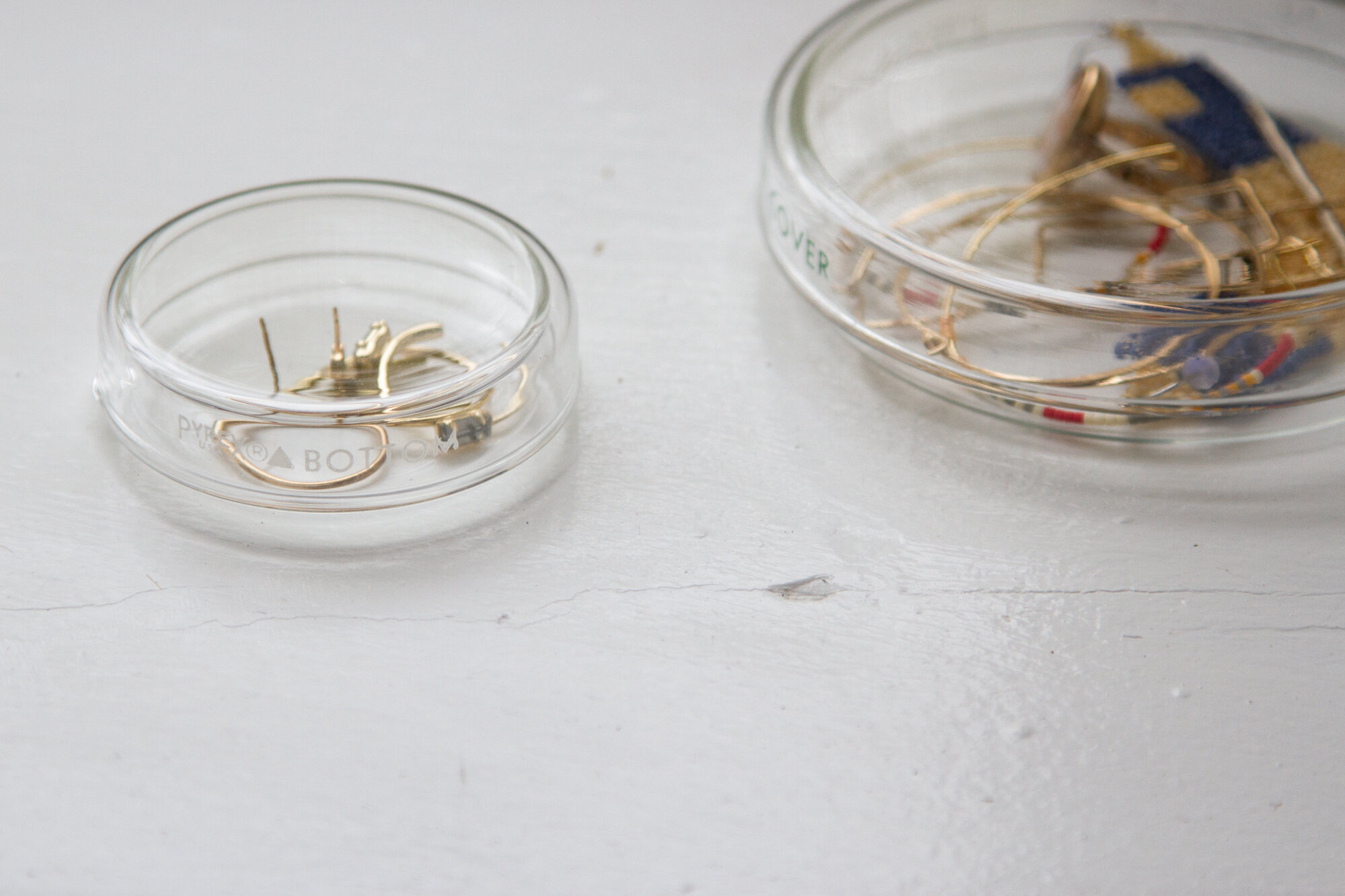 jewelry in petri dishes | reading my tea leaves