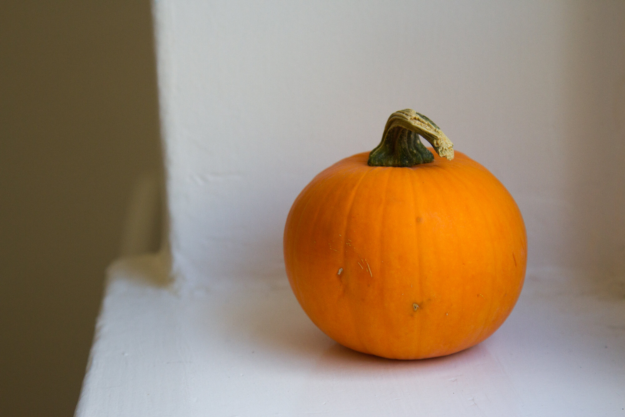 small orange pumpkin