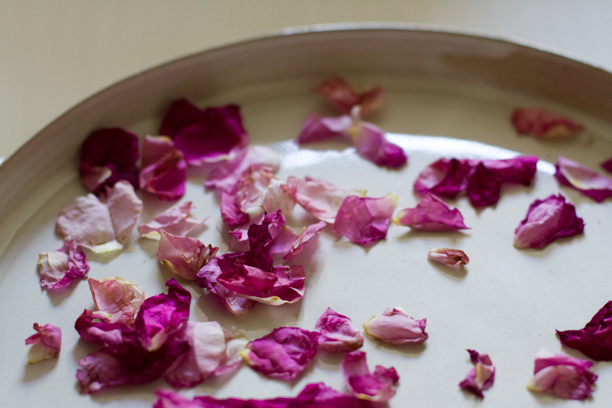 rose petals | reading my tea leaves